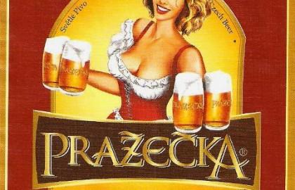 Чехия - ДЛЯ ОТКРЫТОГО ШЕНГЕНА